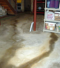 Flooding entering a basement through a floor crack in Eden